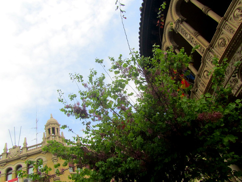 Palacetes de la plaza 2