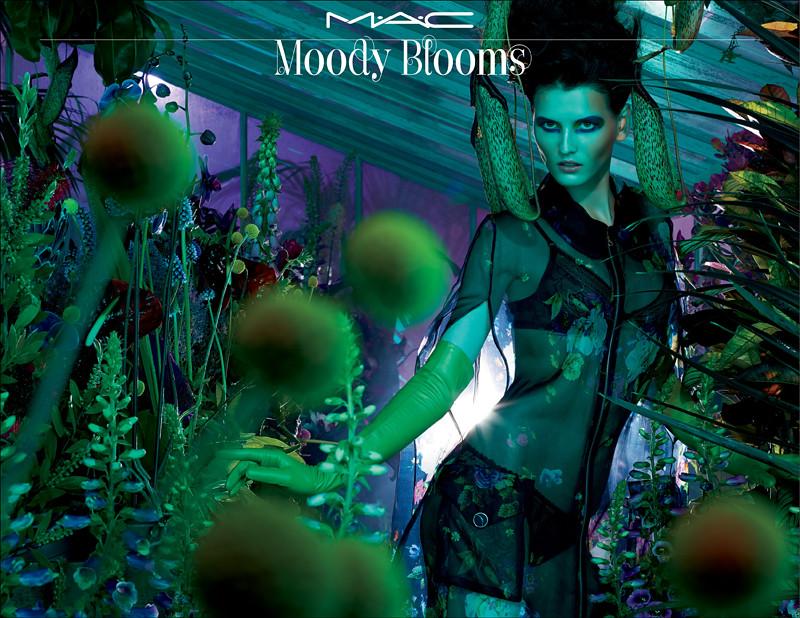 MOODY BLOOMS Beauty copy