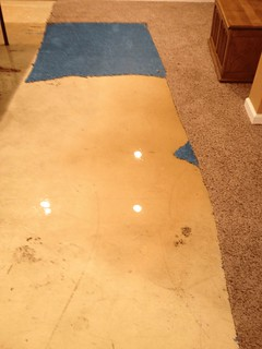 Flooded Basement Cleanup Yardley PA (1)
