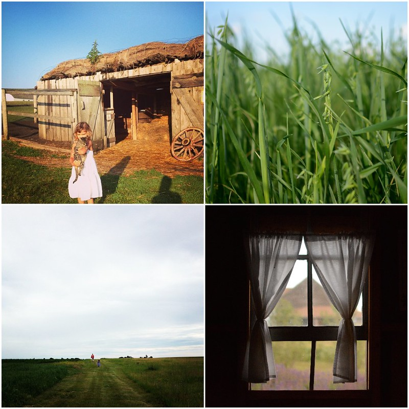 little house collage