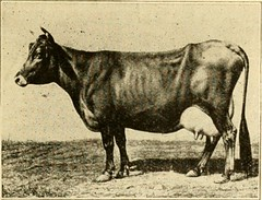 """Image from page 60 of """"Hale's history of agriculture by dates. A simple record of historical events and victories of peaceful industries"""" (1915)"""