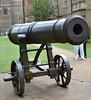 Crimean Trophy Gun, Ely Cambridgeshire-2