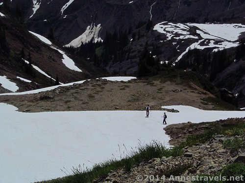 Camp Kaiser, Ptarmigan Ridge Trail, Mount Baker-Snoqualmie National Forest, Washington