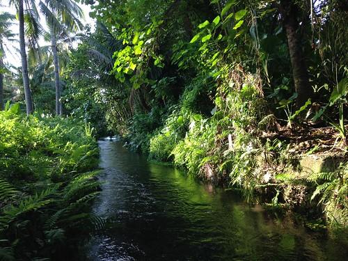 保護湧泉兼顧遊憩 五溝水景點出列