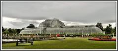 P1260188 Kew Gardens Palm House..