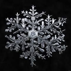 Snowflake: Frozen Reflection