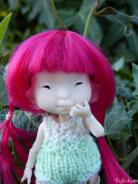 Les tinies de Koikokoro~photos en vrac - Page 5 14868431628_10c8d17812_z