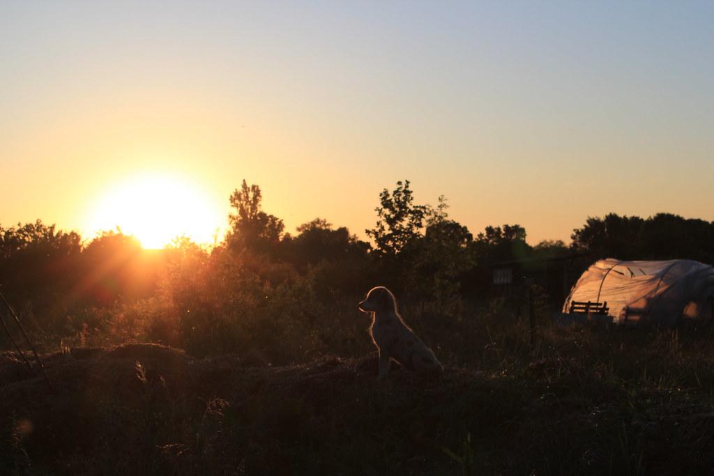 coucher de soleil,u2t