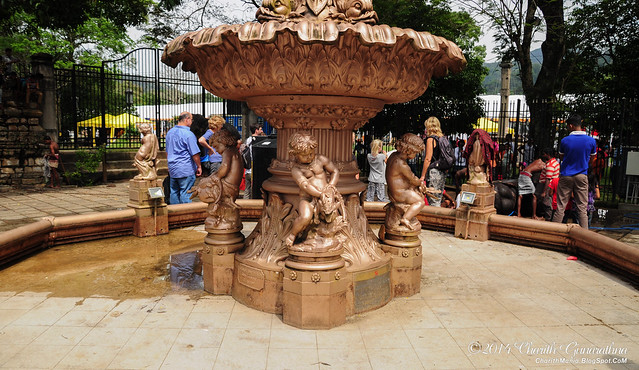Prince of Wales - Coffee Planters Fountain Kandy