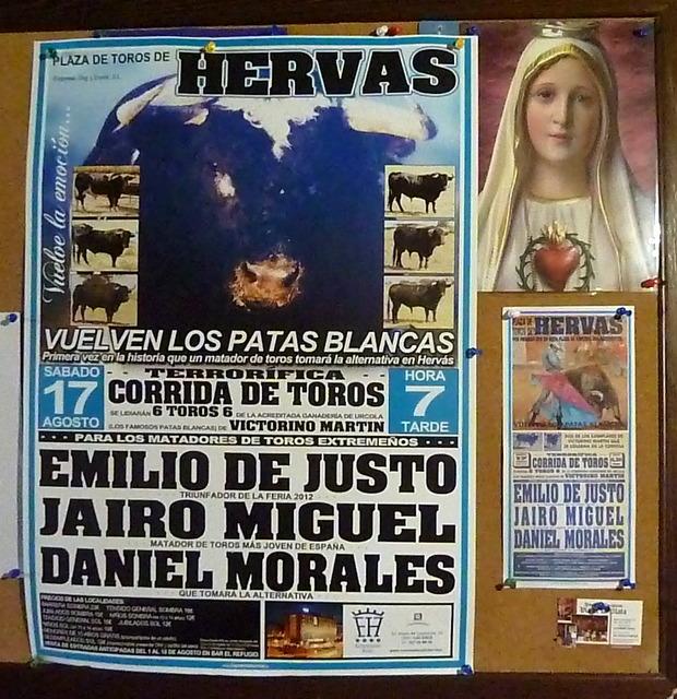 El Toro de Hervas.