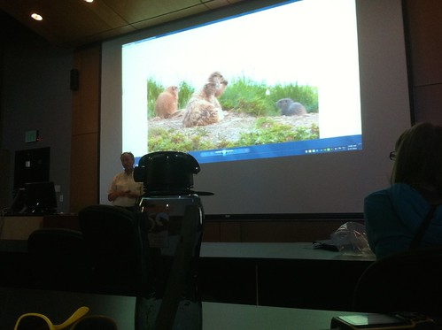 Marmot Ecology Lecture 2