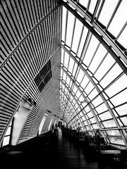 Gare TGV - Avignon