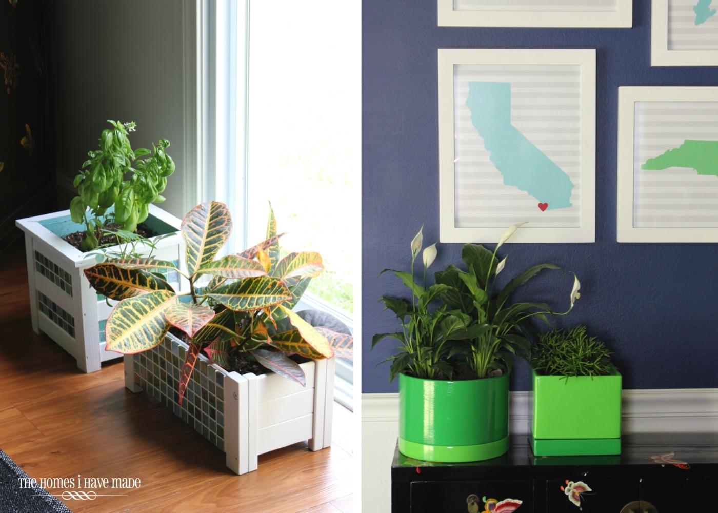 Rental Decorating Solutions-010