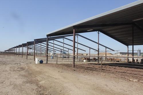 Four J Farms