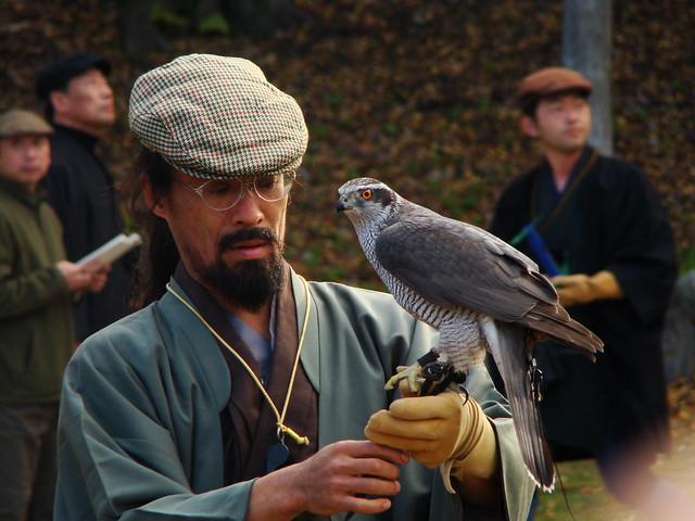 Falconry at Nijo Castle
