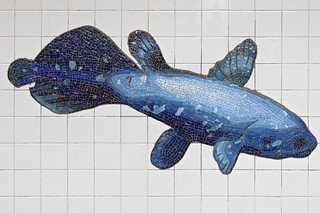 Whale at 81st Street – Museum of Natural History Subway Station