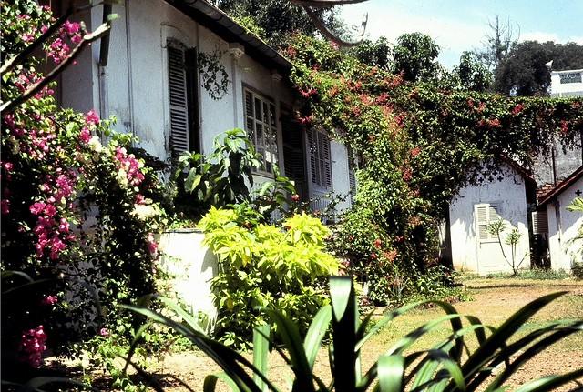 Saïgon 1970-71.  La végétation très envahissante donnait beaucoup de charme à la villa