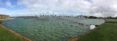 Storm surge at FSC