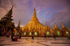 Shwedagon 00809