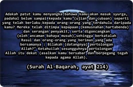 Quotes #7
