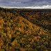 Thacher Park Autumn Pano by Michael Tracy