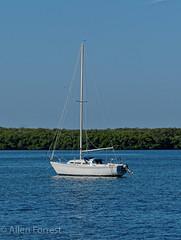 Sailboat at Maximo Park