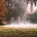 Misty fields by VandenBerge Photography