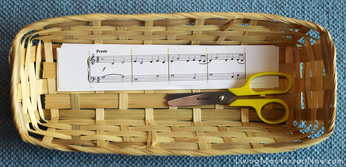 Music-Themed Cutting Basket