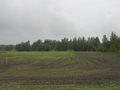 Peltonäkymä, Pohjois-Tapiola Espoo 13.6.2014