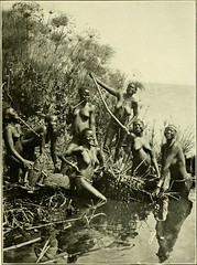 """Image from page 404 of """"In wildest Africa : the record of a hunting and exploration trip through Uganda, Victoria Nyanza, the Kilimanjaro region and British East Africa, with an account of an ascent of the snowfields of Mount Kibo, in East Central Africa,"""