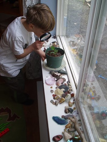 A Windowsill Converted into a Nature Table (Photo from the Montessori Child at Home)