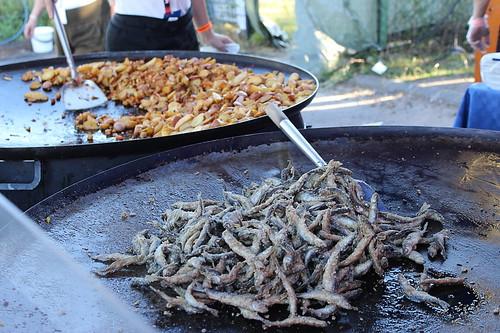 Tikkurila Festival 01082014_018