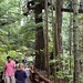Capilano's Treetops Adventures