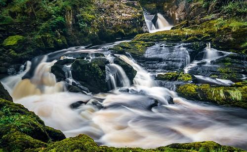 motion tree water rocks stream long exposure yorkshire blurred falls scenary dales ingleton rival