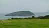 20140908_Llangoed_0039 Puffin Island Black Point