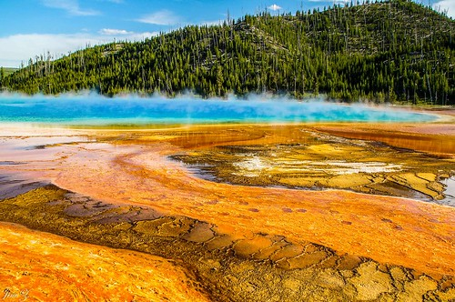 Colorful spring of Yellowstone, Yellowstone, Wyoming, USA