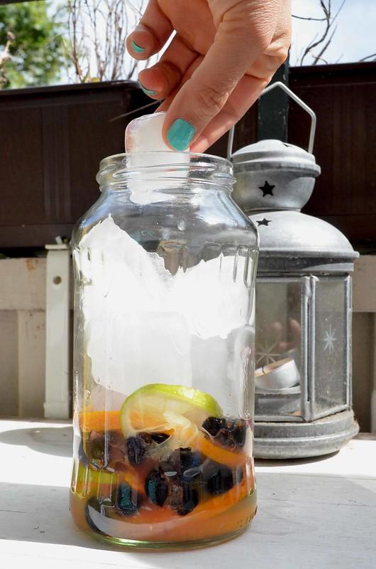 hielos para el agua refrescante de frutas