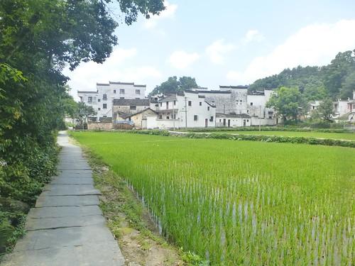 Jiangxi-Wuyuan-Xiaoqi (30)