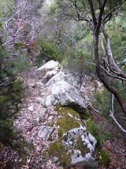 Descente du ravin en V de la Purcaraccia : les vestiges du sentier de la RG