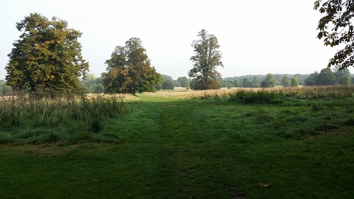 Nonsuch Park, site of medieval palace #LondonLOOP #sh
