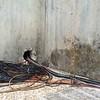 Salida de sonido hacia la unidad móvil, en los edificios de RNE.