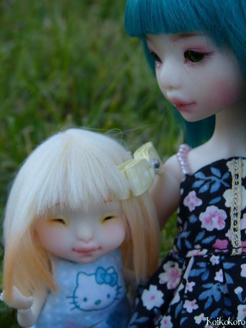 Les tinies de Koikokoro~photos en vrac - Page 6 15203605046_dcd25b3c51_z