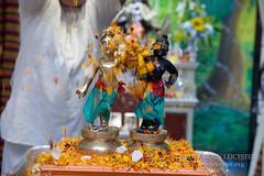 Balarama_Jayanti_10-08-14_9860