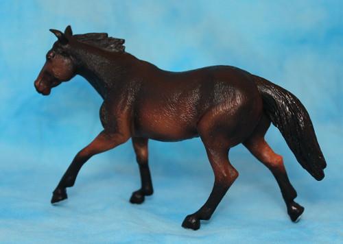 Walkaround of the Mojo Fun Sooty Bay Quarter Horse Stallion 15260193101_36f0064c61