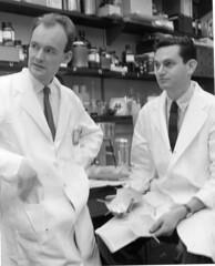 J. Heinreich Matthaei and Marshall Nirenberg