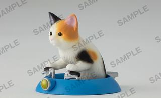 喵星人是真的!駕駛技術高超的盒玩「運轉貓」爆笑登場~ どらテク! 運転ねこ