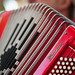 Small photo of Accordian player