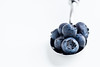 Blueberries by the Spoonful