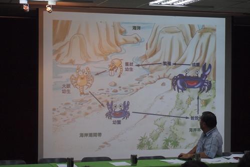 陸蟹生長史