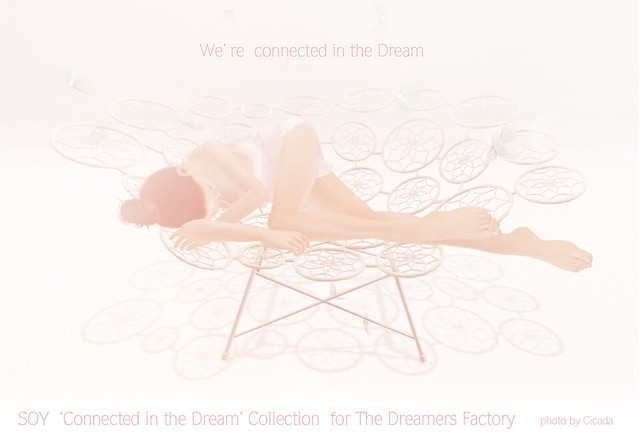 We're connected in the Dream collection